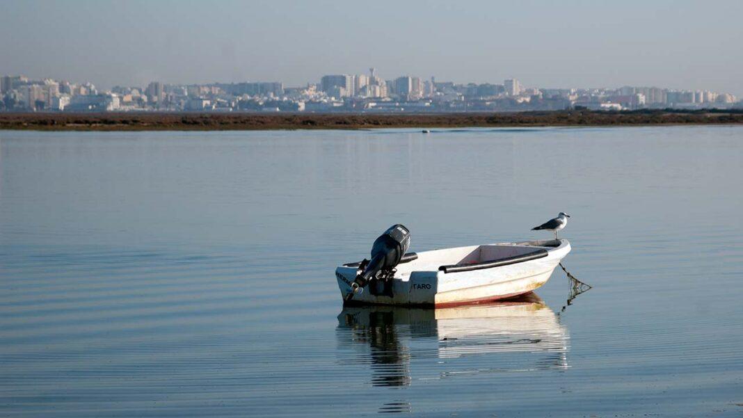 Carreiras fluviais e transportes urbanos para as praias disponíveis para a época balnear a partir de Faro.