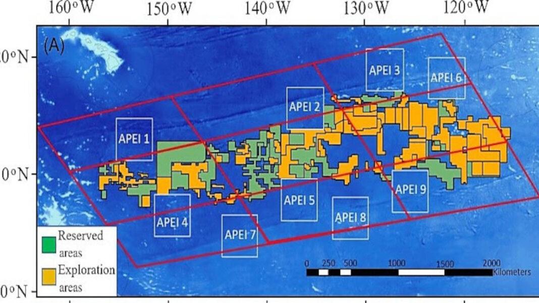 Investigadora da UAlg aborda o mar profundo
