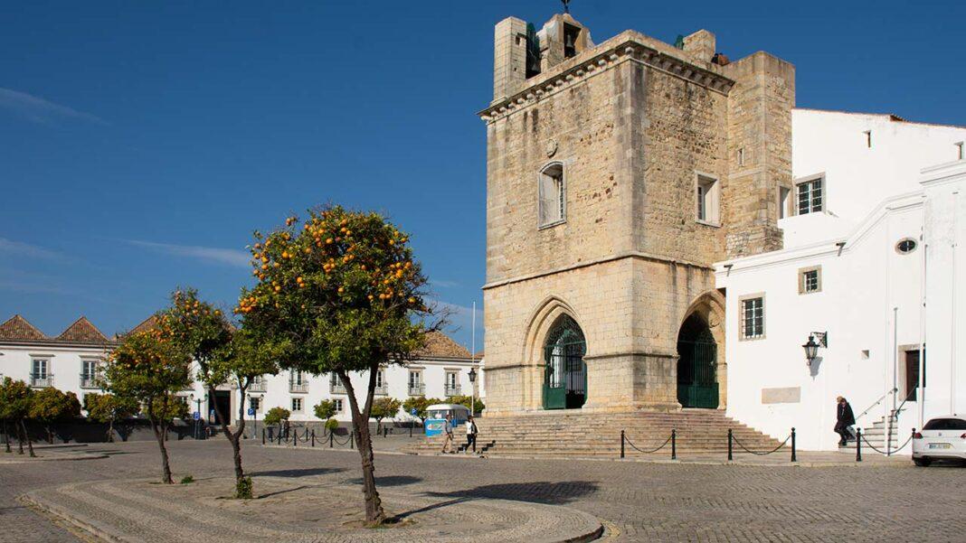 Grupo Municipal do PAN em Faro discute hoje em Assembleia Municipal uma recomendação para que o município proceda à identificação, árvore a árvore, do património arbóreo da cidade e que adira à Rede de Cidades Protetoras da Terra.