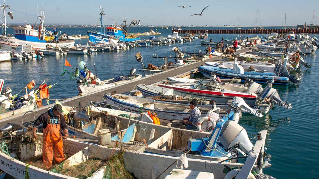 Culatra vai integrar o projeto «SuSTowns: Turismo Sustentável em pequenos e fascinantes povoados da área Mediterrânica».