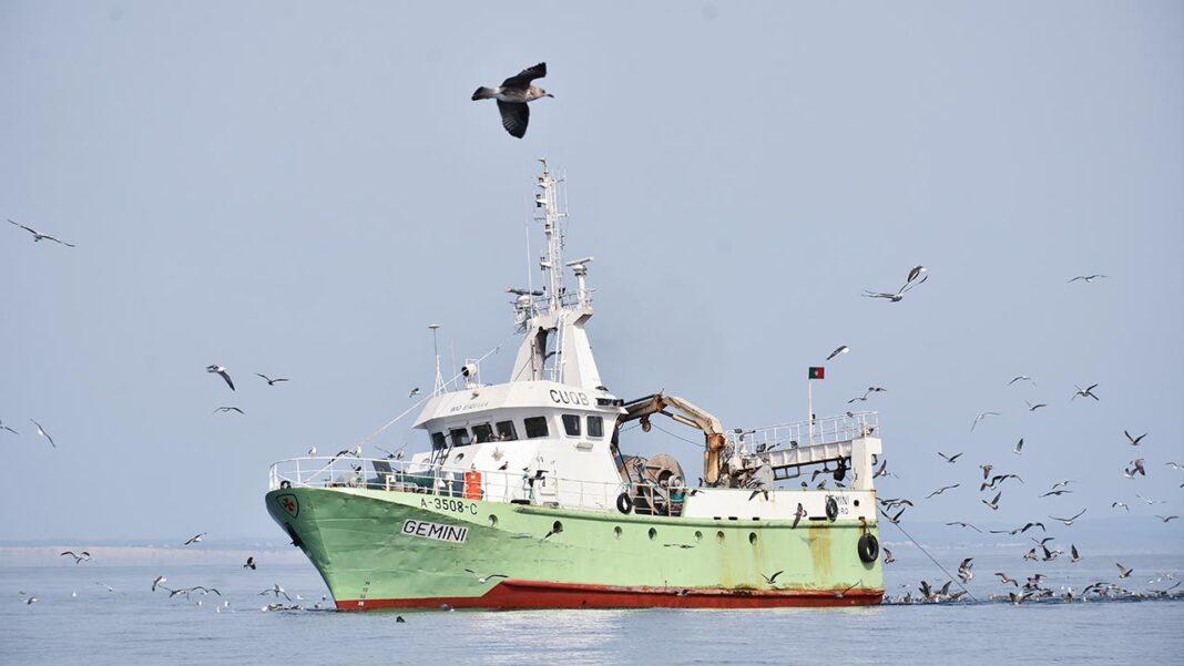 Ministério do Mar reforça apoio às cessações temporárias na pesca no âmbito da pandemia COVID-19.