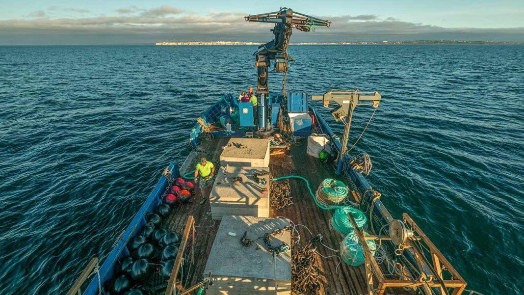 Oceano Fresco, concluiu a instalação do primeiro viveiro de amêijoas a mar aberto do mundo. Investimento na infraestrutura do Alvor ronda os 3,1 milhões de euros. Empresa da Nazaré quer ser líder mundial pela sustentabilidade do recurso.