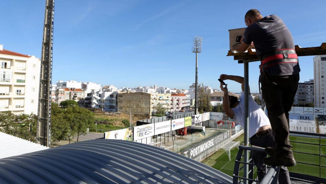 Alojamento Local para Aves em Portimão