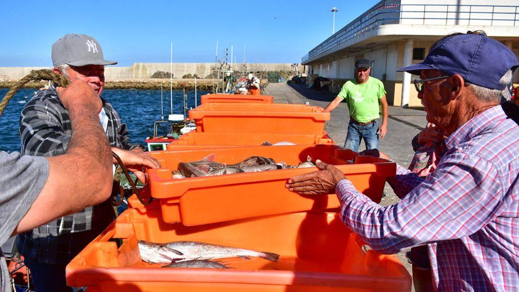 Algarve tem três lotas certificadas: Quarteira, Sagres e Vila Real de Santo António.