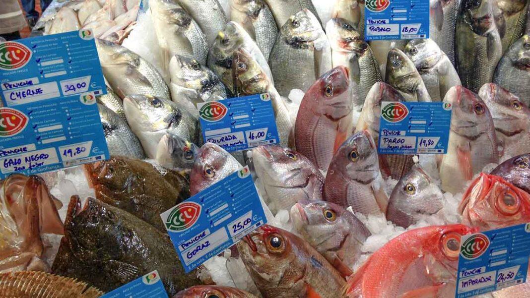 O consumidor já pode identificar os locais de venda de pescado fresco com origem nas lotas portuguesas no novo website «Lota em Casa» da Docapesca.