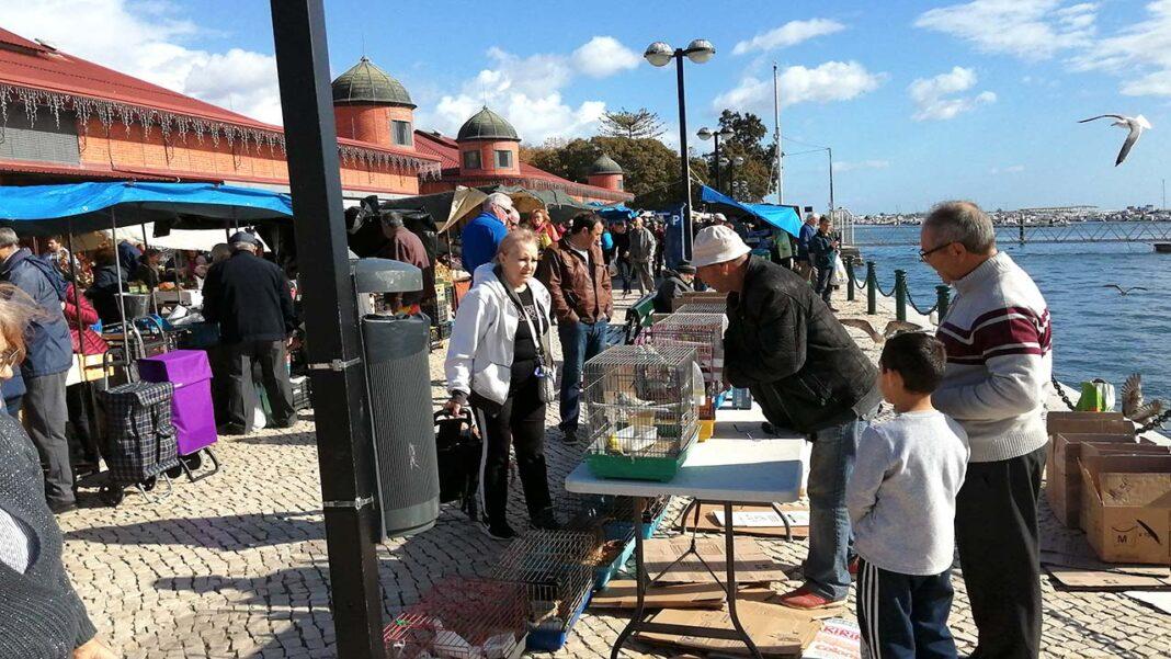 O tradicional mercado dos produtores e agricultores que se realiza todos os sábados na lateral dos Mercados de Olhão vai mudar de local até ao final de janeiro.