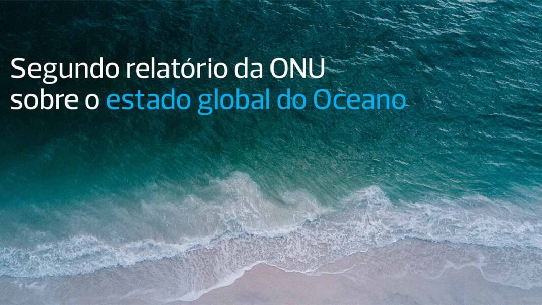Maria João Bebianno, professora catedrática da Universidade do Algarve (UAlg) e coordenadora do Centro de Investigação Marinha e Ambiental (CIMA), é a única portuguesa a integrar um grupo de 25 peritos nomeados pela Organização das Nações Unidas (ONU), que participaram na elaboração do segundo Relatório do Estado do Oceano, aprovado recentemente.