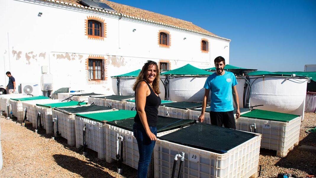 Estação do Ramalhete, laboratório do Centro de Ciências do Mar do Algarve (CCMAR) da Universidade do Algarve (UAlg) também já tem interesse municipal.