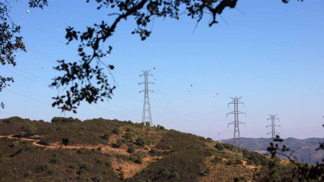 O consumo de eletricidade aumentou 14,9 por cento nas famílias, desceu 18,3 por cento nos serviços e recuou 5,6 por cento na indústria entre março e dezembro, tendo no conjunto da atividade económica caído 3,8 por cento, adiantou a Agência para a Energia (Adene).