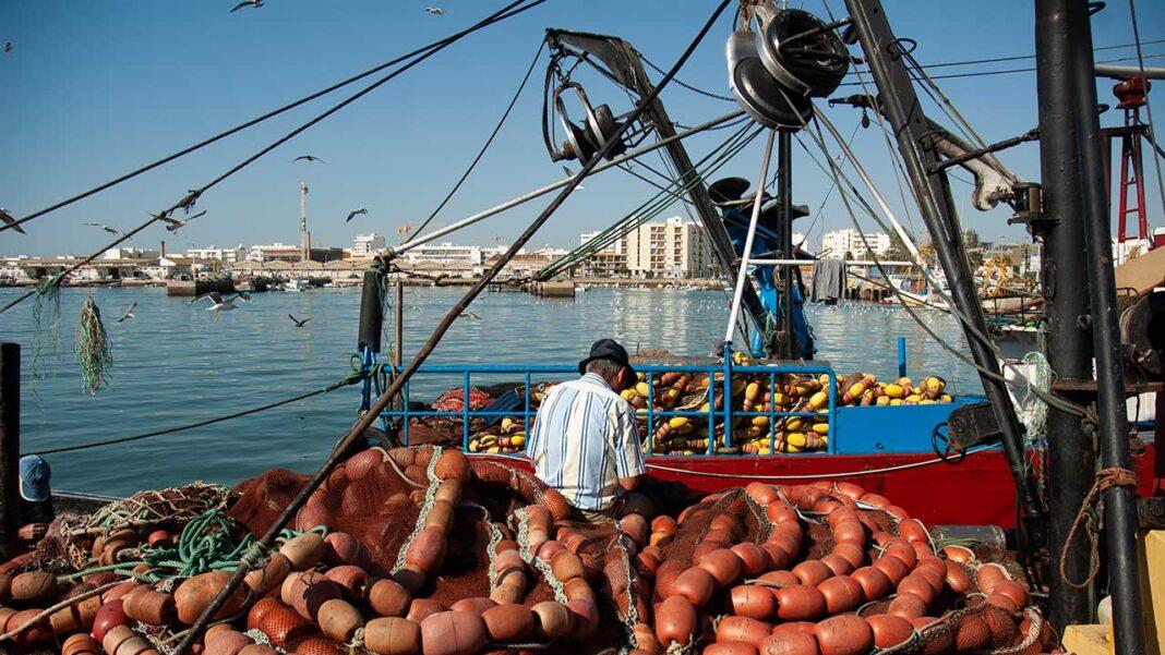 A Docapesca concluiu a empreitada de reforço das condições de segurança do porto de pesca de Olhão que representou um investimento de 25 mil euros.