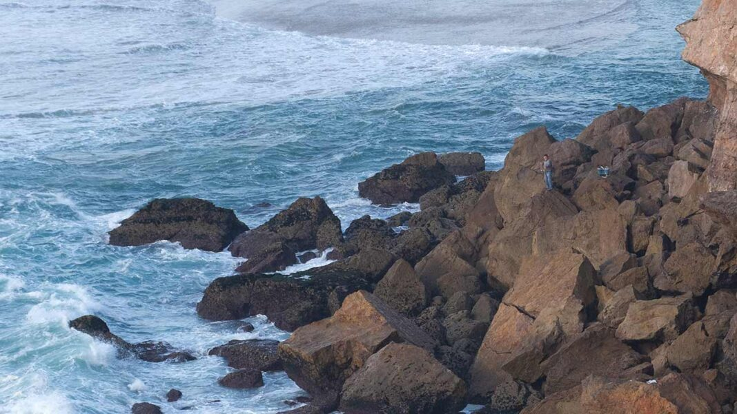 Deputados socialistas do Algarve questionam Governo sobre proibição da pesca lúdica do sargo na Costa Vicentina e Sudoeste alentejano.