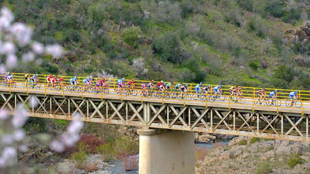 União Ciclista Internacional (UCI)