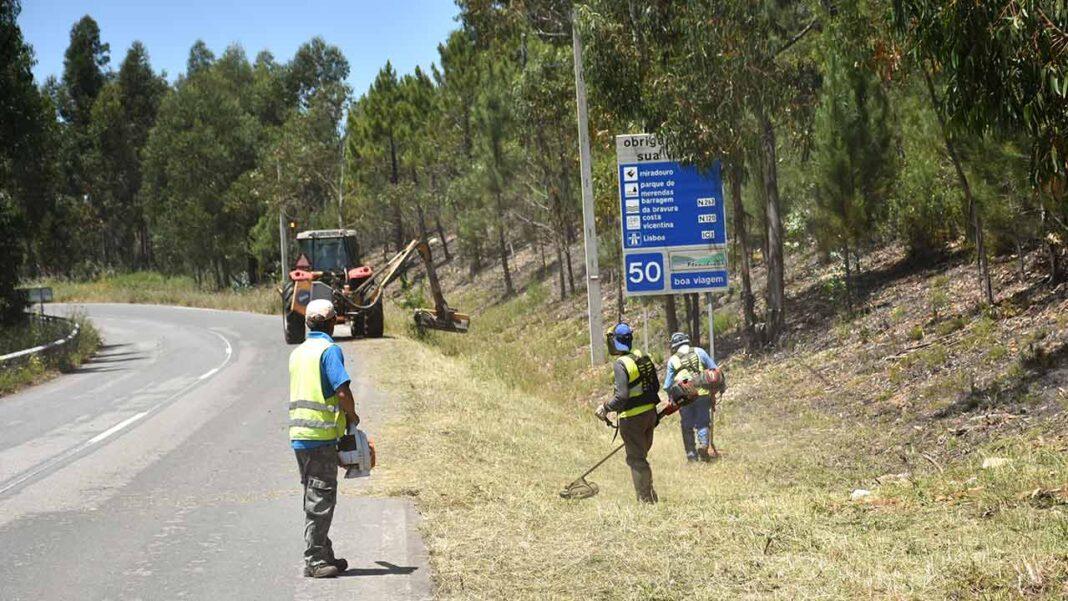 O prazo de limpeza de terrenos foi prorrogado por dois meses, de 15 de março para 15 de maio, anunciou ontem o Ministério do Ambiente e da Ação Climática, após o Presidente da República promulgar o diploma do governo.