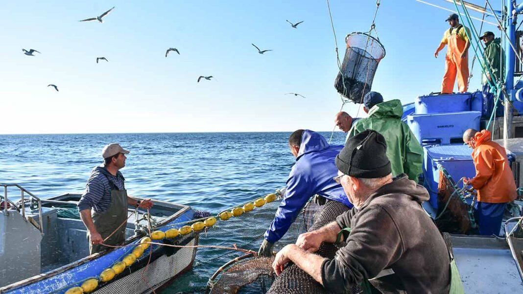 Mar 2020 atribuiu, desde abril de 2020, perto de 15 milhões de euros ao sector da pesca e aquicultura para mitigar os efeitos da pandemia de COVID-19, foi hoje anunciado.