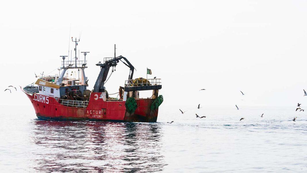 O governo reforçou com mais 20 milhões de euros a linha de crédito de apoio à pesca e elevou para 270 mil euros brutos o montante total a atribuir por beneficiário, segundo uma portaria publicada hoje.