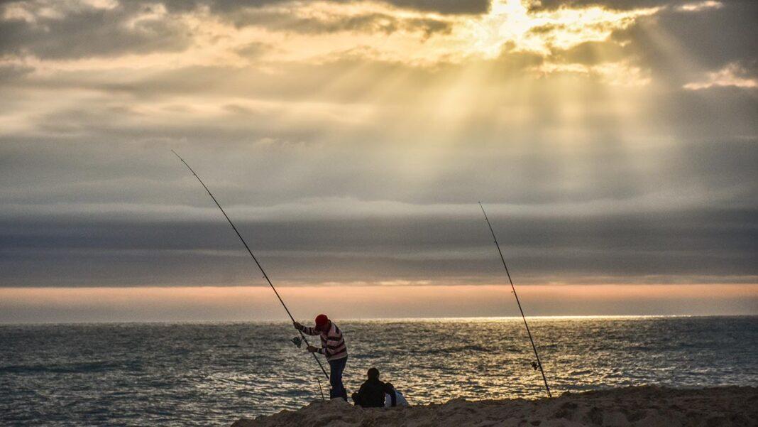 A pesca lúdica, nas modalidades apeada, embarcada e submarina, pode voltar a ser praticada a partir de hoje.