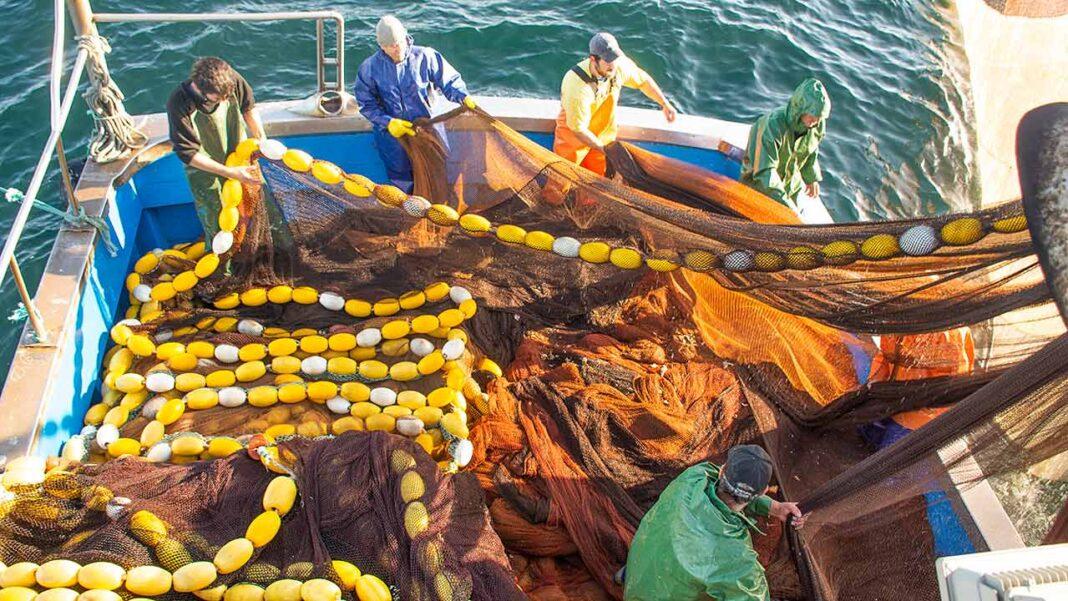 Data para o início da pesca do cerco não foi consensual mas deverá manter-se para o início da segunda semana de maio. No geral, a quota da safra da sardinha não deverá ultrapassar as 30 mil toneladas.