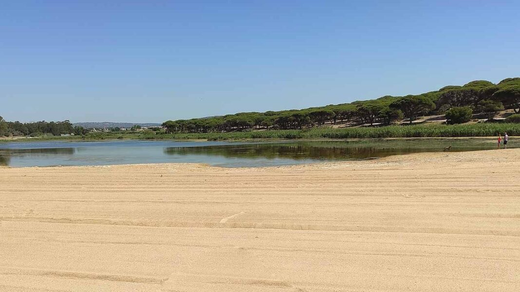 Câmara Municipal de Loulé aprova intenção de criação da Reserva Natural Local da Foz do Almargem e do Trafal.