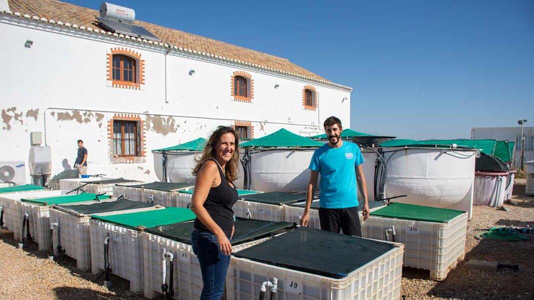 Restrições para valorização e proteção da Estação do Ramalhete da Universidade do Algarve foram aprovadas pelo município de Faro.