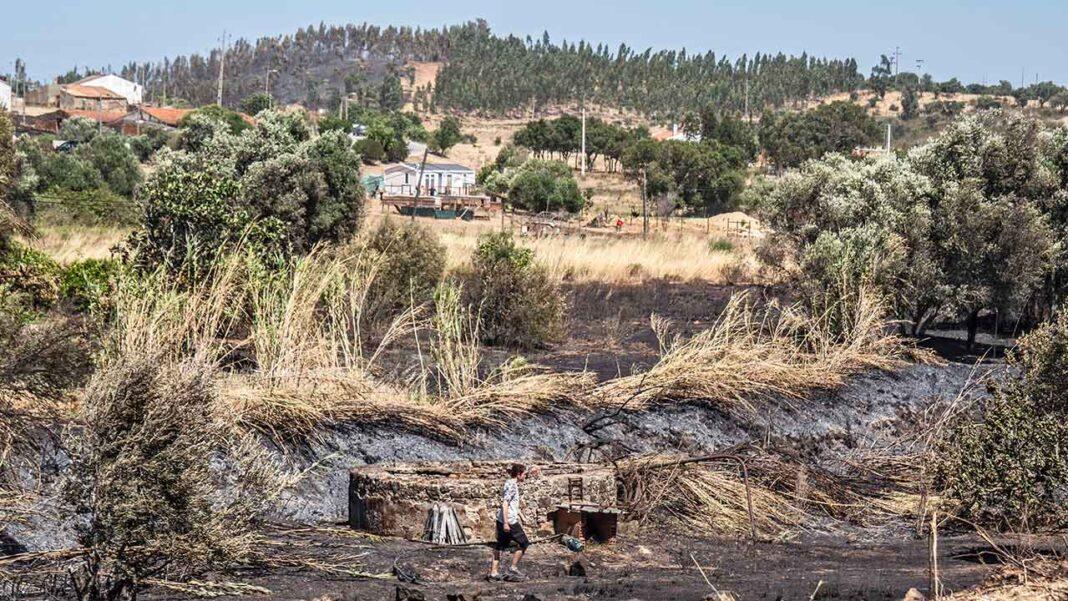 Agricultores de Monchique recebem apoio da Câmara Municipal para recuperar equipamentos agrícolas destruídos pelo incêndio.