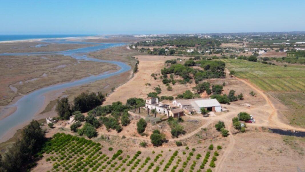 Terminou mais uma campanha arqueológica na cidade romana de Balsa, em Luz de Tavira, em julho, onde durante um mês uma equipa das universidades do Algarve e de Cádis e do município de Tavira desenvolveram trabalhos de investigação.