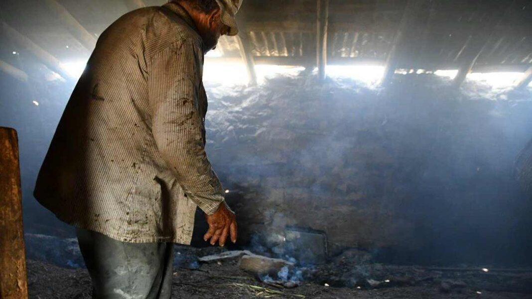 Ministério da Agricultura aciona mecanismos de apoio para agricultores e apicultores afetados pelos incêndios de agosto.