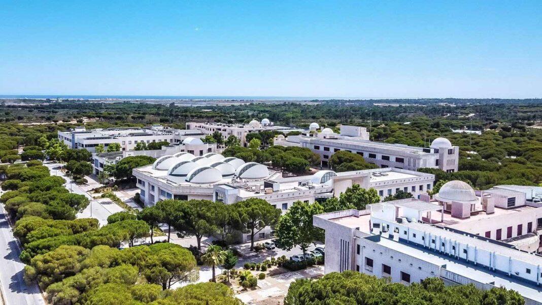 A Universidade do Algarve (UAlg) apresenta pelo segundo ano consecutivo uma taxa de colocação superior à média nacional. De acordo com os resultados da 1ª fase do Concurso Nacional de Acesso ao Ensino Superior de 2021/22, foram colocados na Universidade do Algarve (UAlg) 1585 novos estudantes, o segundo maior número dos últimos 30 anos.